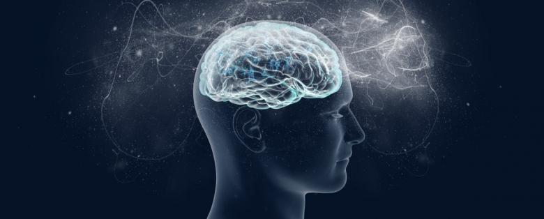 19 мая «Нейропсихологический практикум»
